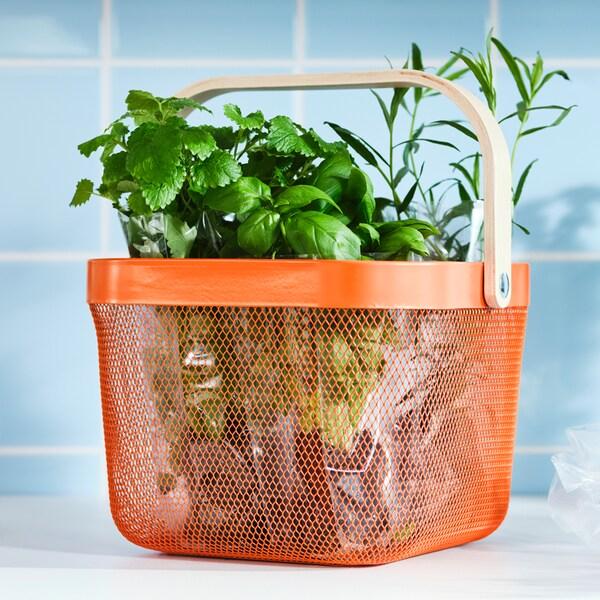 Egy élénk narancssárga színű acélhálóból készült és nyír furnér fogantyúval ellátott RISATORP kosár tele zöld fűszernövényekkel, egy konyhapulton.
