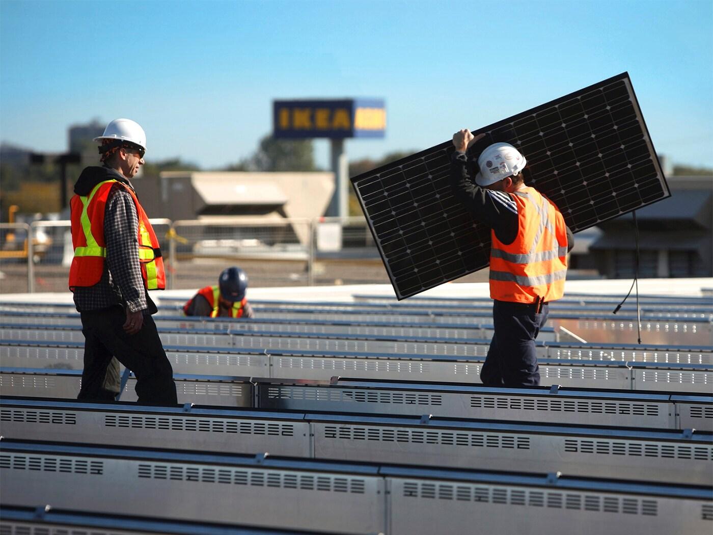Egy mezőn napelemet felszerelő két férfi