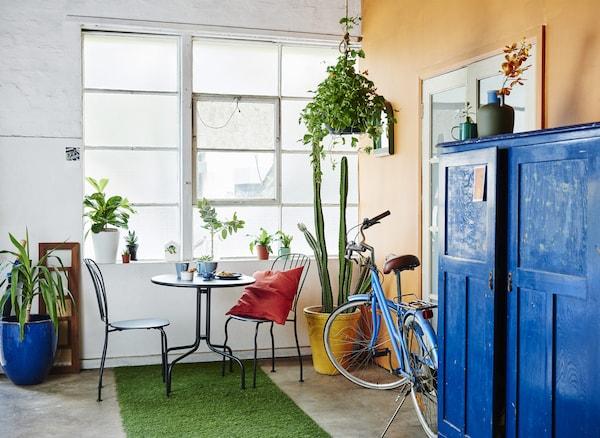 Ein Flur mit orangefarbener Wand, einem blauen Schrank, Zimmerpflanzen und LÄCKÖ Tisch mit 2 Stühlen für draußen in Grau.