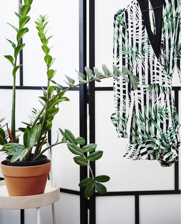 einrichtungsideen mit pflanzen ikea ikea. Black Bedroom Furniture Sets. Home Design Ideas