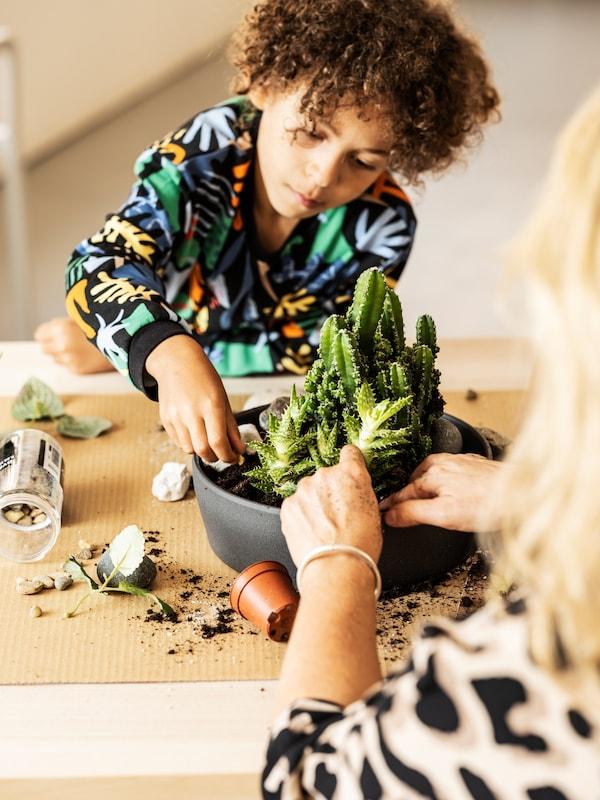 Ein Kind in einem bunten Sweatshirt pflanzt gemeinsam mit einem Elternteil Zimmerpflanzen in einen PERSILLADE Übertopf.
