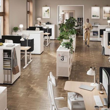 Ein offen gestalteter Bürobereich mit einem zentralen Regal, das mit Pflanzen geschmückt ist. Ausserdem befinden sich hier gut beleuchtete Arbeitsplätze.