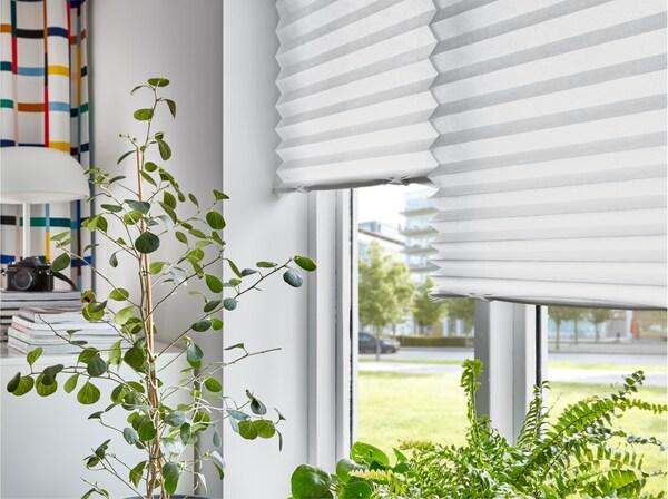 Eine Fensterfront mit einer SCHOTTIS Faltjalousie in Weiß. Auf dem Fensterbrett und davor sind Zimmerpflanzen zu sehen.