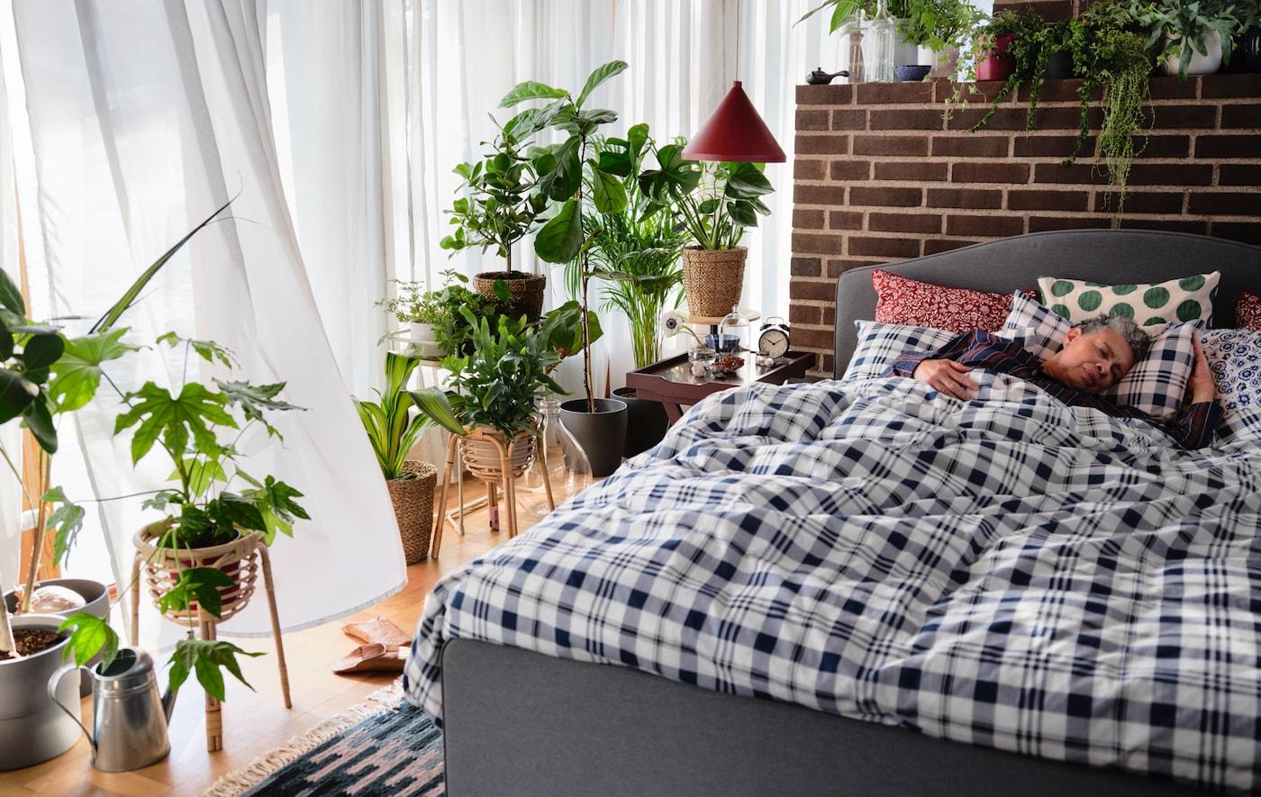 Eine Frau liegt entspannt in einem HAUGA Bettgestell, auf dem karierte Bettwäsche zu sehen ist. Das Bett ist umgeben von Zimmerpflanzen. Am Fenster hängen weiße Gardinen.