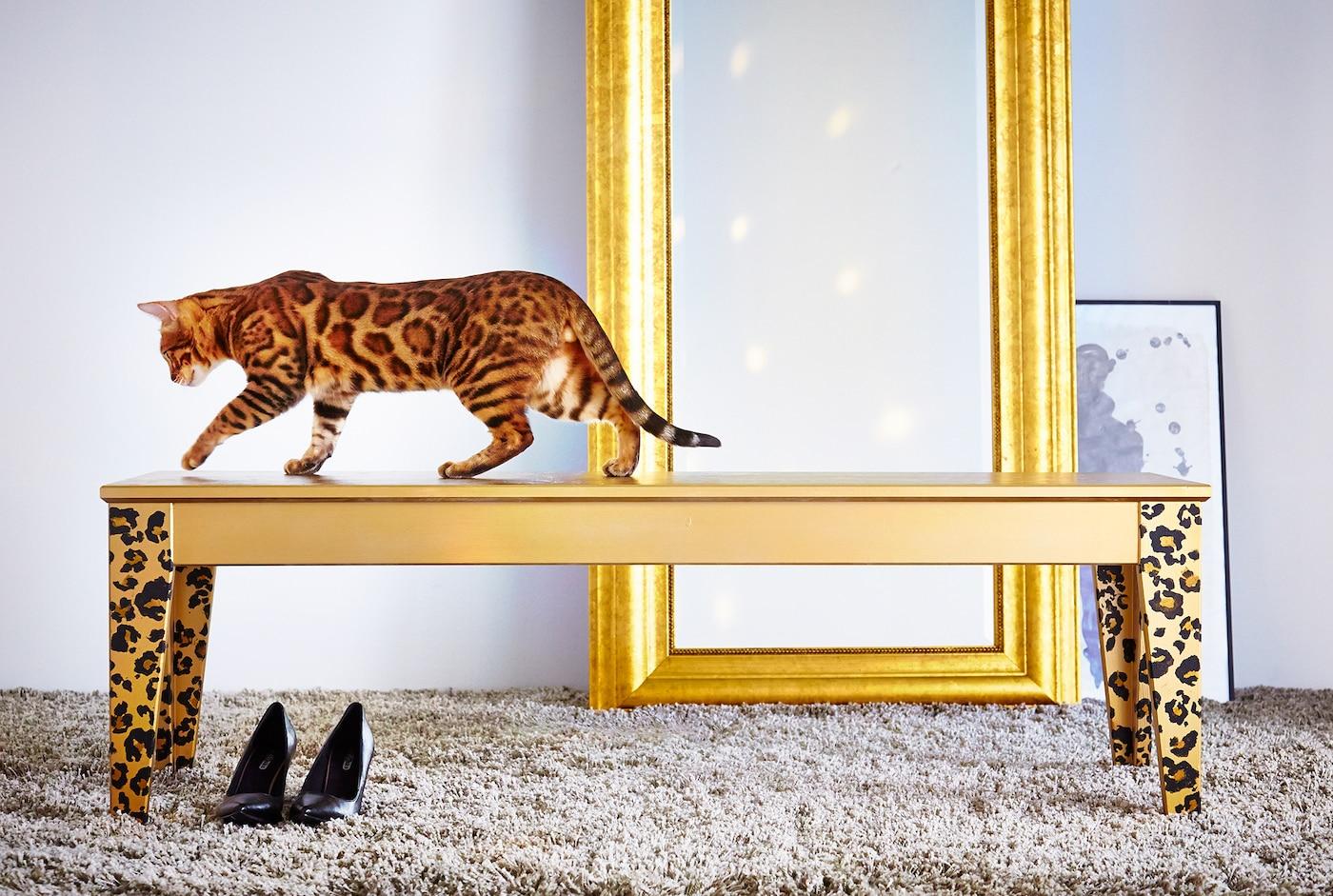Eine Katze läuft auf einer gold lackierten NORNÄS Bank, im Hintergrund steht ein goldener Spiegel.