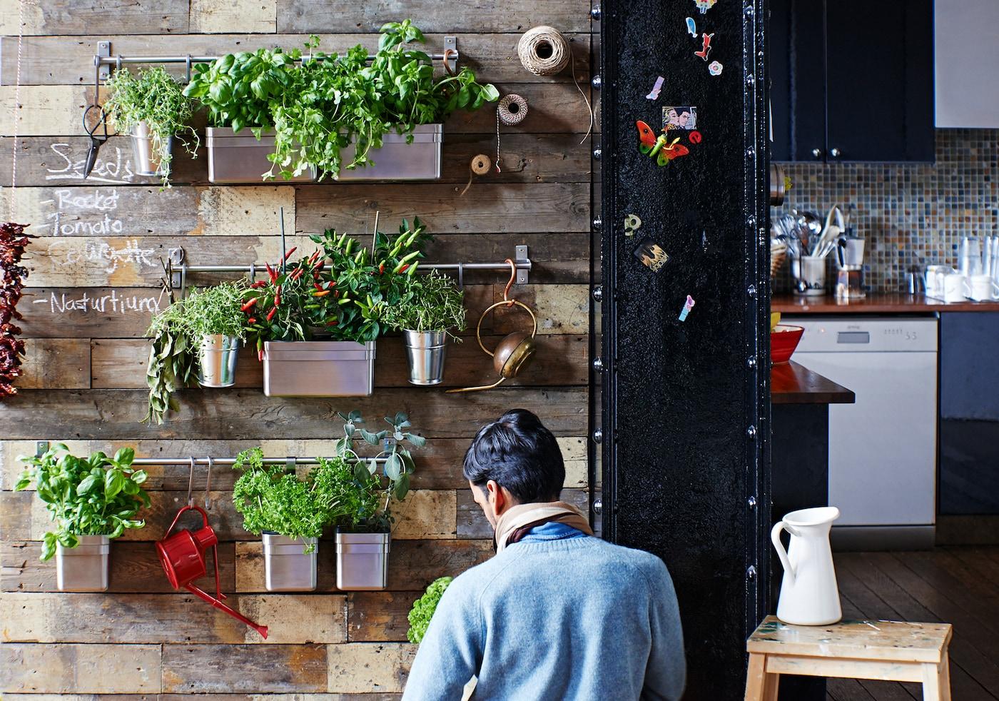 Kräutergarten in der Küche anlegen - IKEA Deutschland
