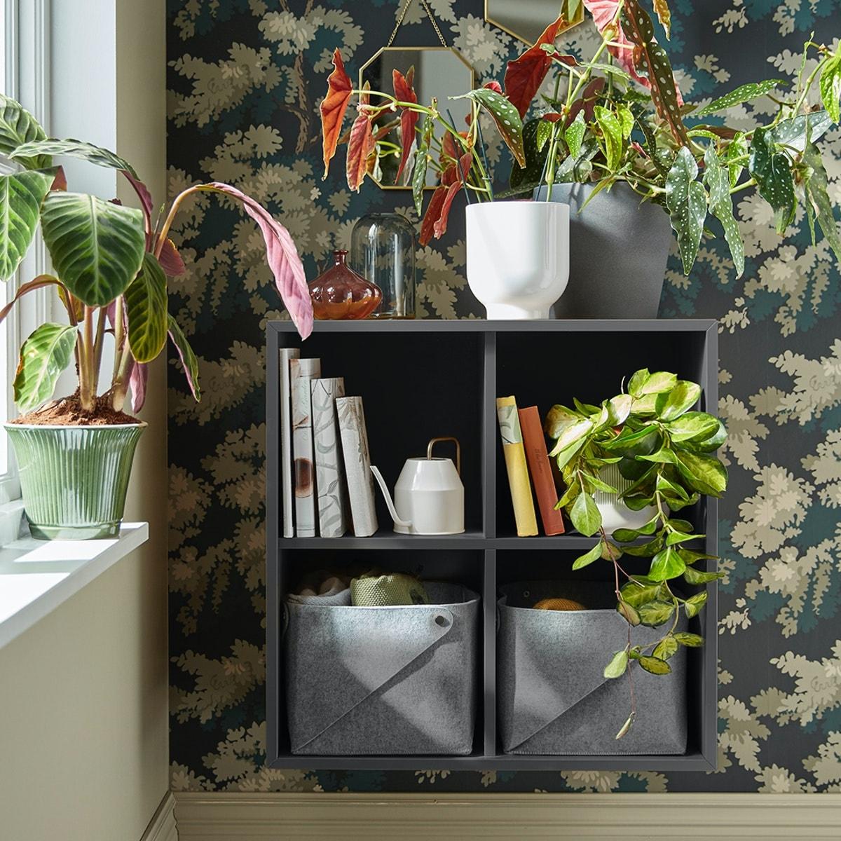 EKET förvaring i grått upphängd på en vägg med mönstrad tapet och flertalet växter och inredning runtomkring.