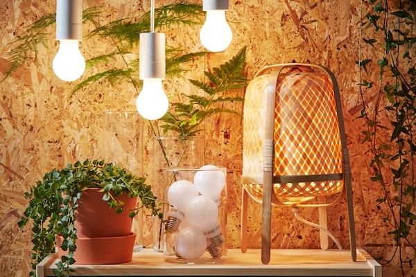 En bild på en växt i en terakottakruka, en glasskål med LED lampor och en lampa i bambu står framför en trävägg.
