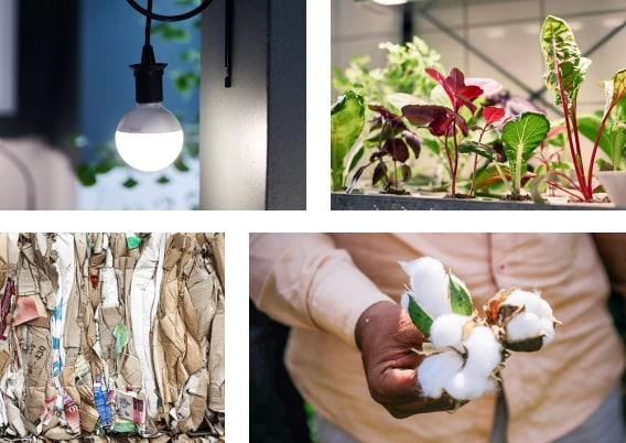 En collage af fire billeder, der symboliserer bæredygtighedhed