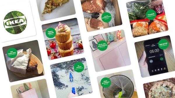 En collage af opslag fra Instagram-profilen Grøn Rytme
