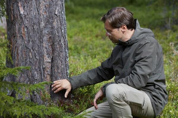 En mand med briller sidder i skovbunden ved siden af et træ. Han undersøger træets stamme ved at røre ved den.