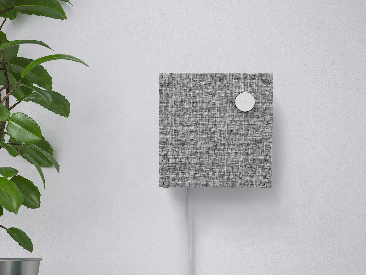 ENEBY Bluetooth speaker wall mounted on a white wall next to a green plant.