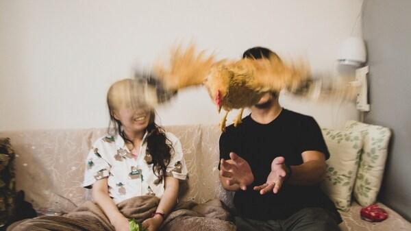 Et par sitter i sofaen og kaster kjælehanen sin opp i været.