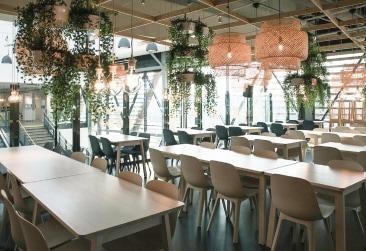 Et rum med lange borde og stole hængende planter og lampeskærm