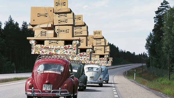 Express delivery in 48h to your home
