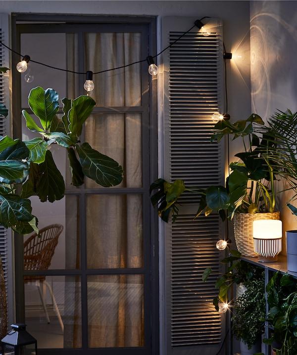 Extérieur nocturne avec la porte d'un balcon avec volets, entourée de plusieurs plantes, guirlande lumineuse et lampe LED.