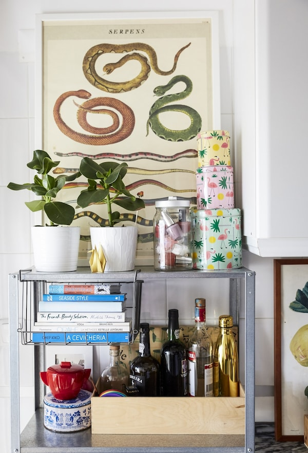 A shelving unit with pot plants, tins and books.