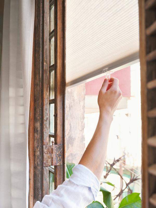 Femme fermant un store devant une fenêtre en bois habillée de rideaux blancs.