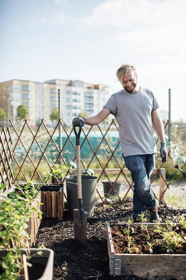Finde heraus, wie du einen Stadtgarten anlegen kannst