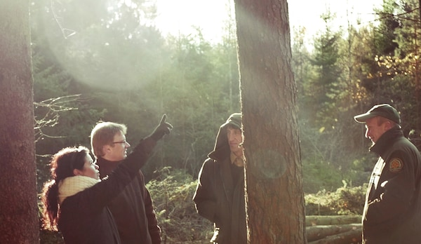 Four people in the woods with trees surrounding them.