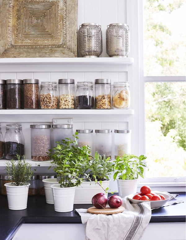 Fresh herbs in pots on the kitchen worktop.