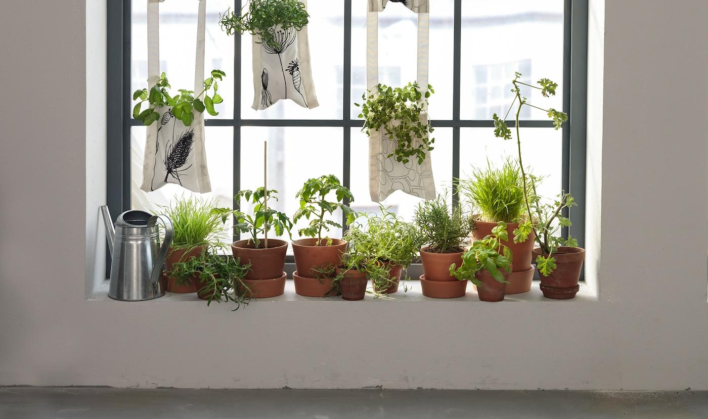 Gärtnern in der Wohnung mit einem Hängegarten mit Stofftaschen