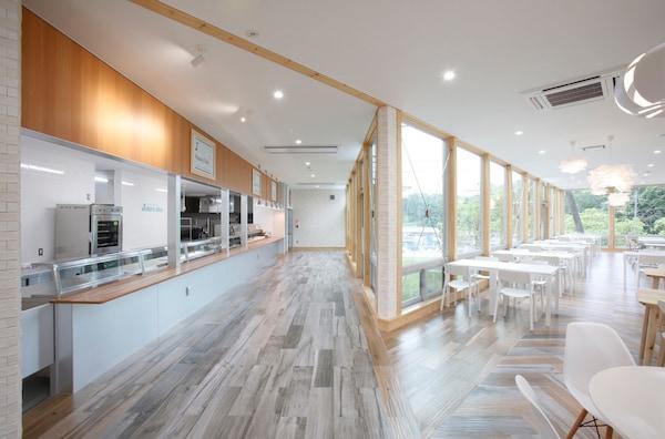 左側が厨房とサービスのスペース、右がカフェレストランスペース。窓が広く、心地よい空間に なっている。