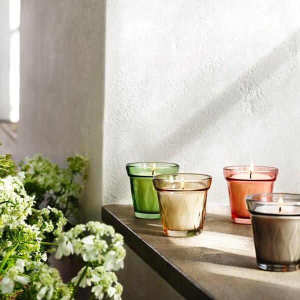 gekleurde glazen theelichtjes op een houten vensterbank naast een plant