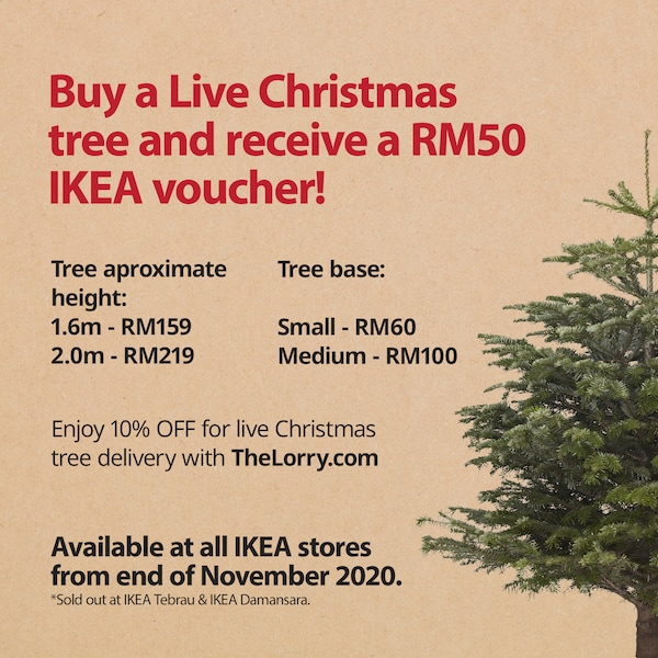 Get a Live Christmas Tree at your nearest IKEA store now