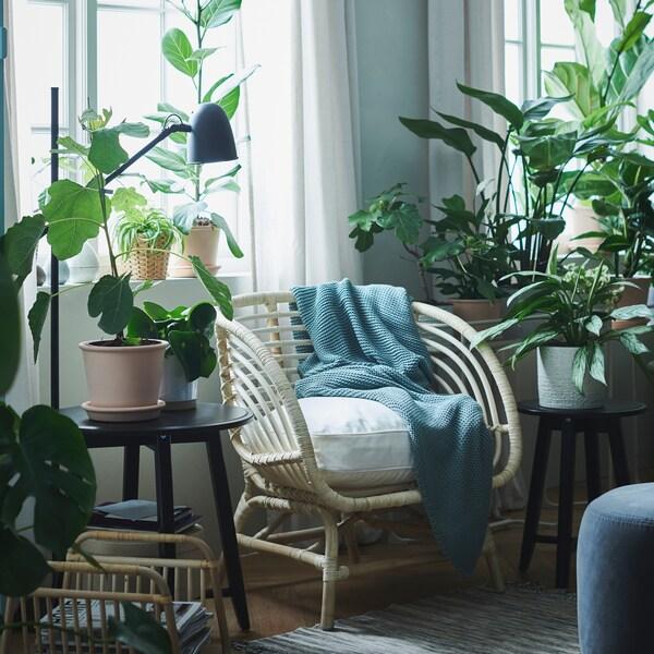 غرفة مشرقة بها كرسي بذراعين BUSKBO مع وسادة بيضاء بين نافذتين محاطة بنباتات خضراء مورقة.