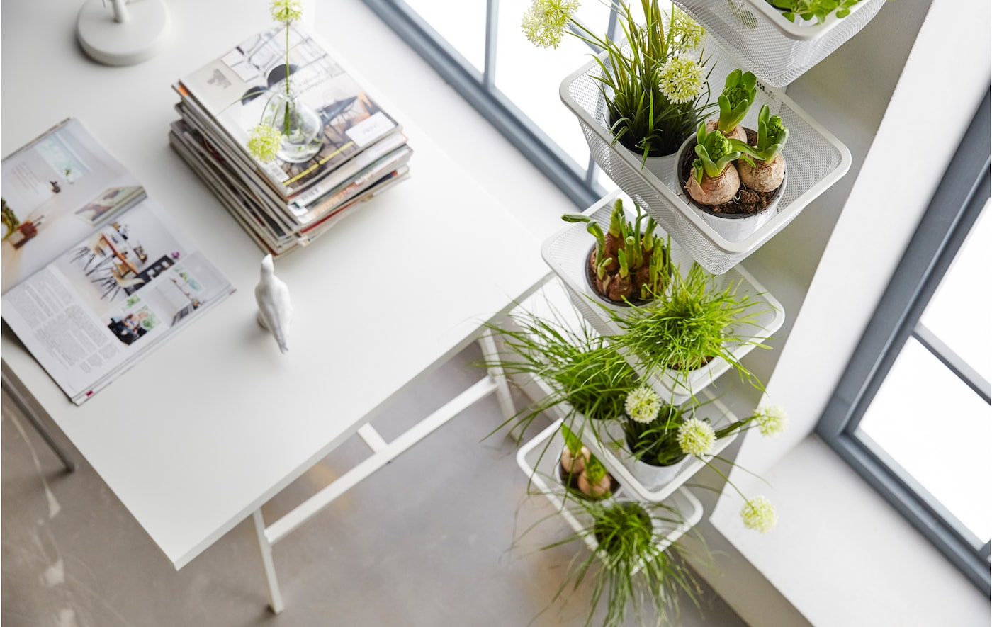 Got garden dreams but only a small apartment? Here's how to make the most of your space.