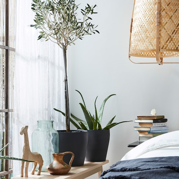 Green plants in dark grey plant pots, a bench, a pendant lamp in rattan and white sheer curtains.