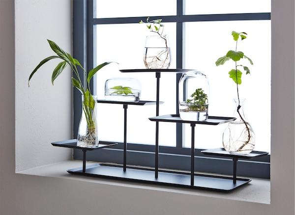 حامل عرض  SAMMANHANG على رف نافذة مع العديد من النباتات الصغيرة في المزهريات.