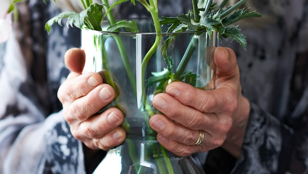 Hands wearing a gold wedding band are holding a clear glass vase with green stalks inside.