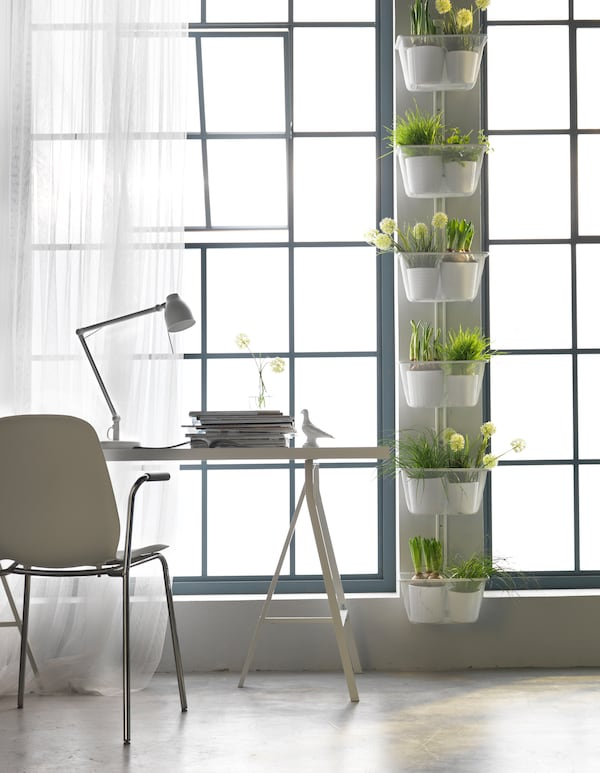 Hanging planters in the space in between windows