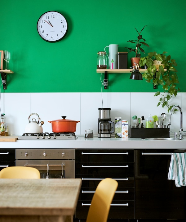 High-gloss black kitchen base units, white splashback on a green wall with a shelf with plants, jars and a black clamp light.