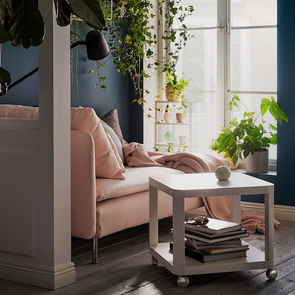 How to increase your living room well-being with plants