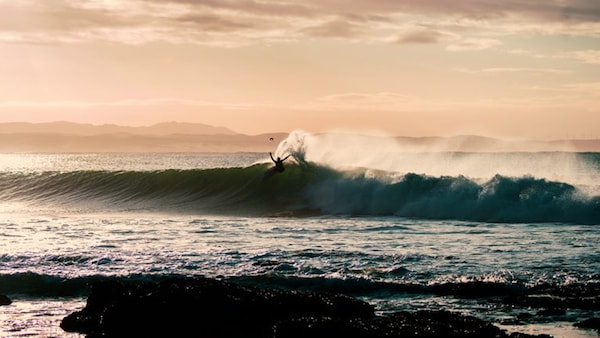 IKEA and World Surf League riding a wave of sustainability