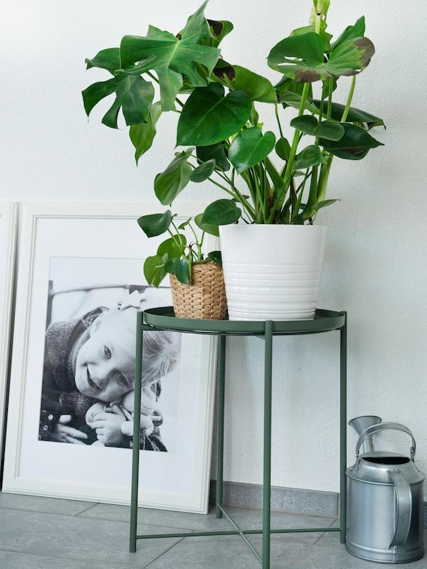 IKEA GLADOM Beistelltisch im Wohnzimmer in Kombination mit IKEA Pflanze.