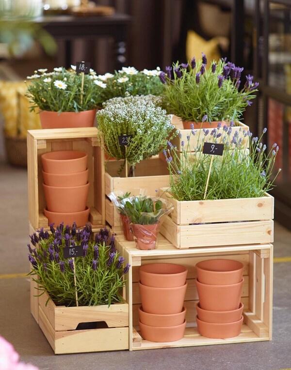 IKEA KNAGGLIG mäntypuisista laatikoista voit luoda näyttävän kasvihyllyn. Puulaatikot voi asetella eri päin ja tehdä upean kerroksellisen kukkahyllyn.
