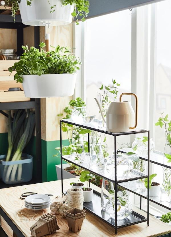 IKEA SAMMANHANG storage shelf has three levels and is an ideal place to grow small herbs by a window.