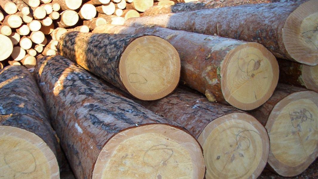 Ikea Statement Holz Header