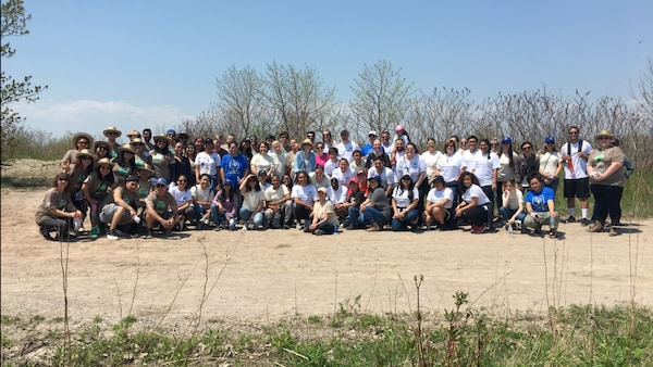 IKEA Vaughan co-workers using shovels to plant trees in a Vaughan area park..