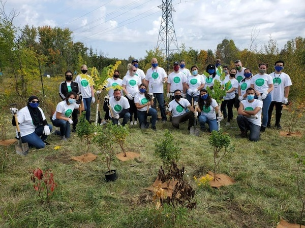 IKEA Vaughan coworkers sitting next to planted trees.