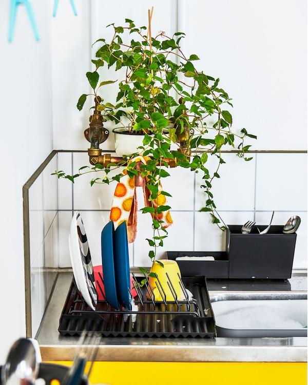 Il piano di una minicucina con scolapiatti per le stoviglie e le posate. Una pianta frondosa sospesa nasconde le tubature - IKEA