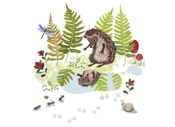 Ilustracija iz dečje knjige o ježu.