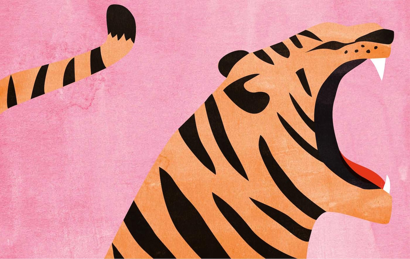Ilustracija tigra na roze pozadini.