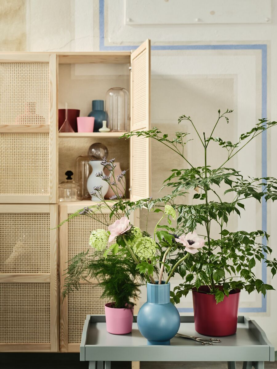 IVAR Hylla i obehandlad furu med färglada krukor och vaser på en grön bricka framför står växter och krukor från OMFÅNG serien