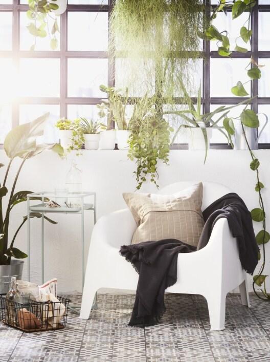 Jardí, terrassa i balcó