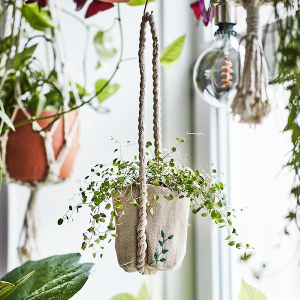 jardinière-suspendue-collection-limitée-BOTANISK-IKEA